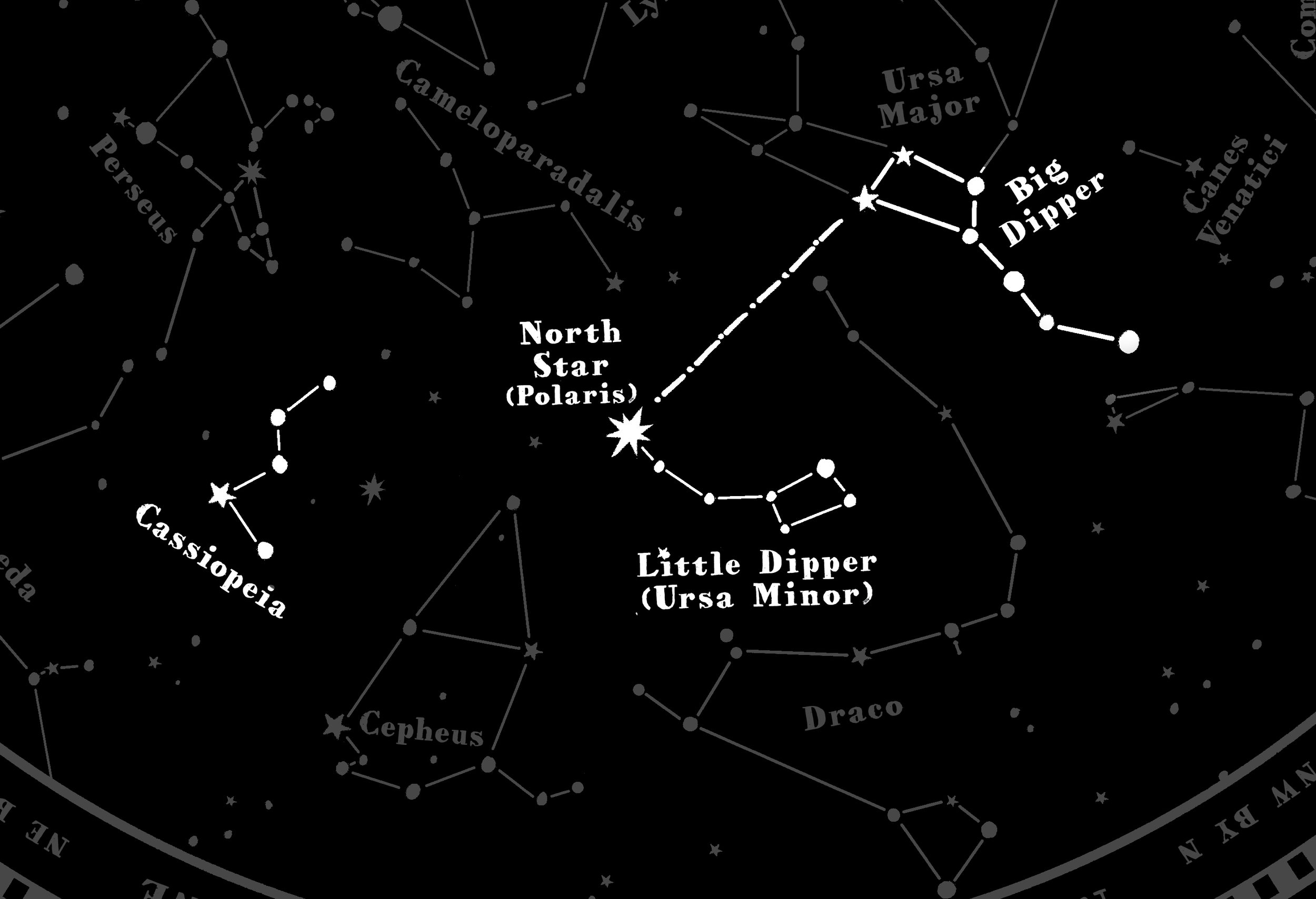 colter_co_navigation_star_bandana