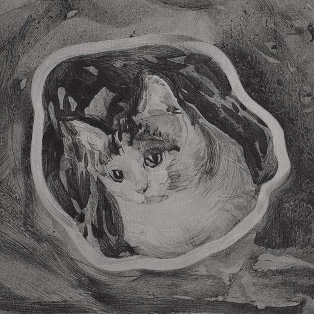 I drew a cat. Graphite on paper. 33x27cm