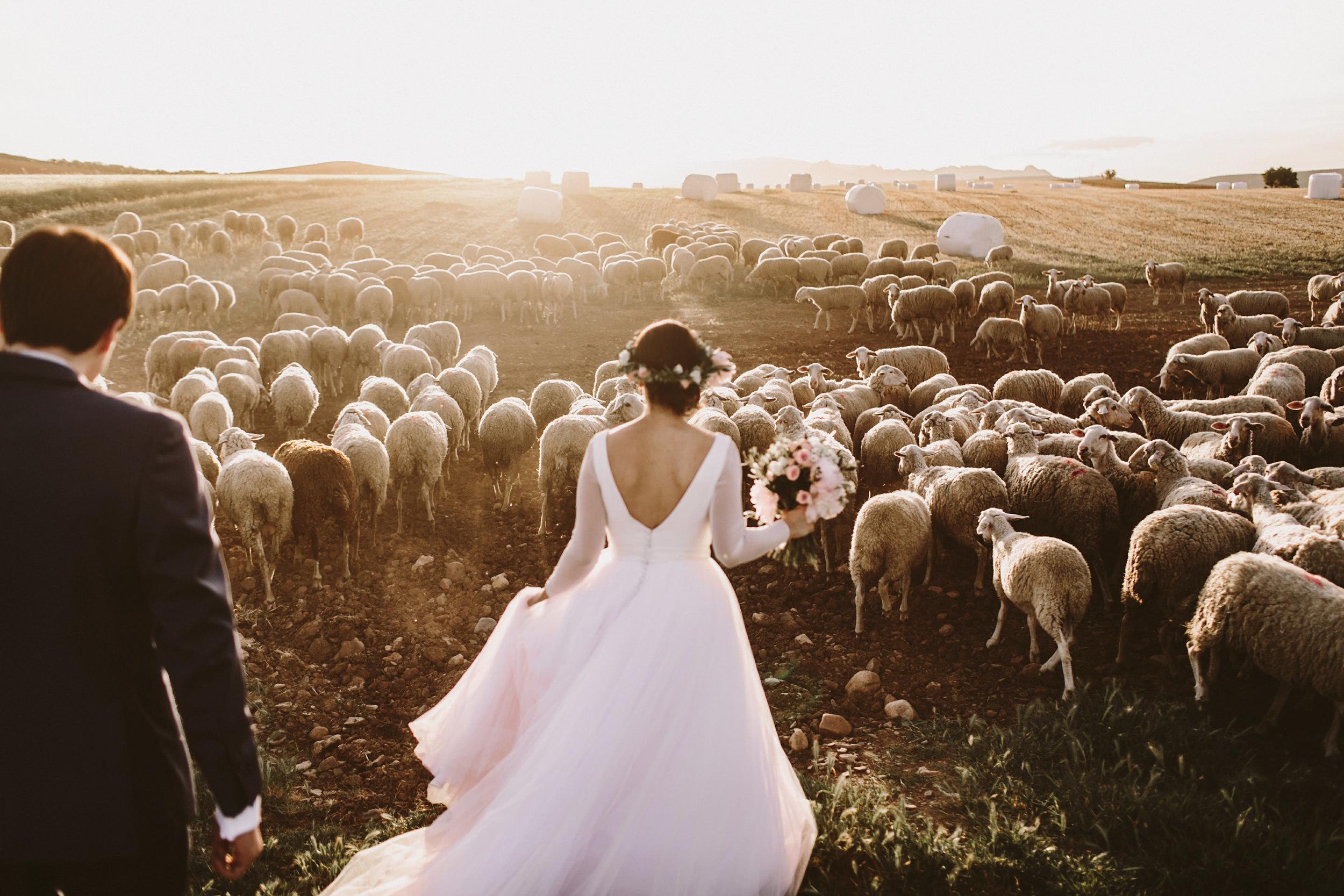 04.rocio.luis.boda.2079.People-Producciones.JPG
