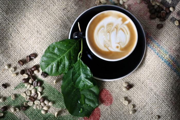 Latteart foto David Falk