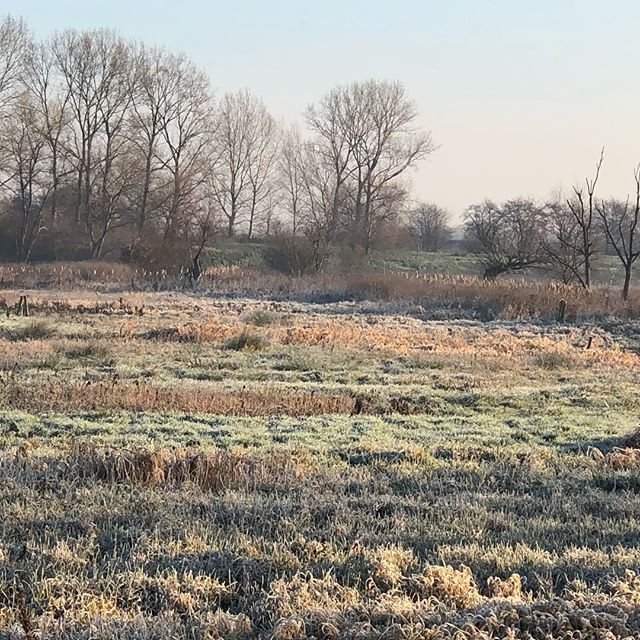 Frosty nature reserve not far from countryhouse BDC#BDC