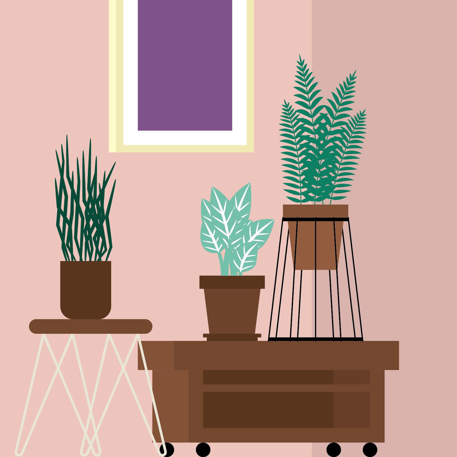 Plants-02.jpg