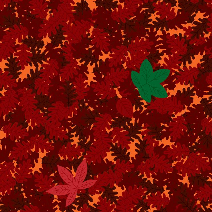 1A_Leaf-09.jpg