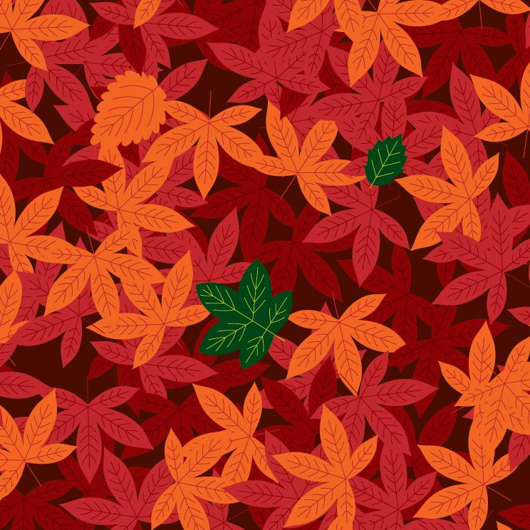 1A_Leaf-07.jpg