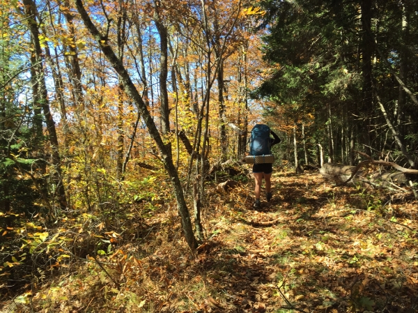 smokymountains-trail.jpg