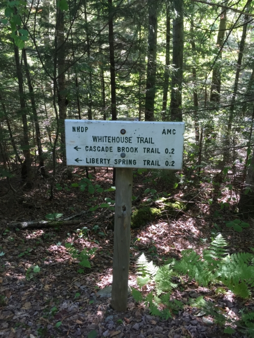 Your first sign from the parking lot. The only place Whitehouse Trailhead is mentioned!