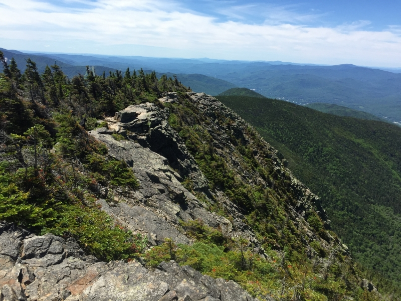 The view from Mount Flume