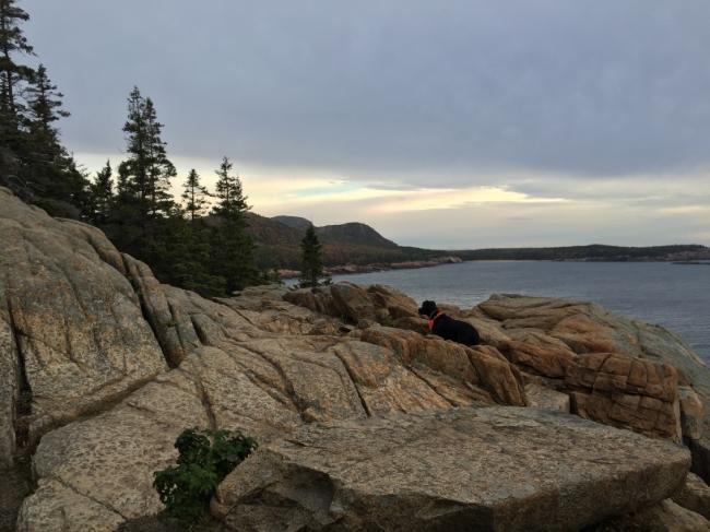 Dawn in Acadia National Park