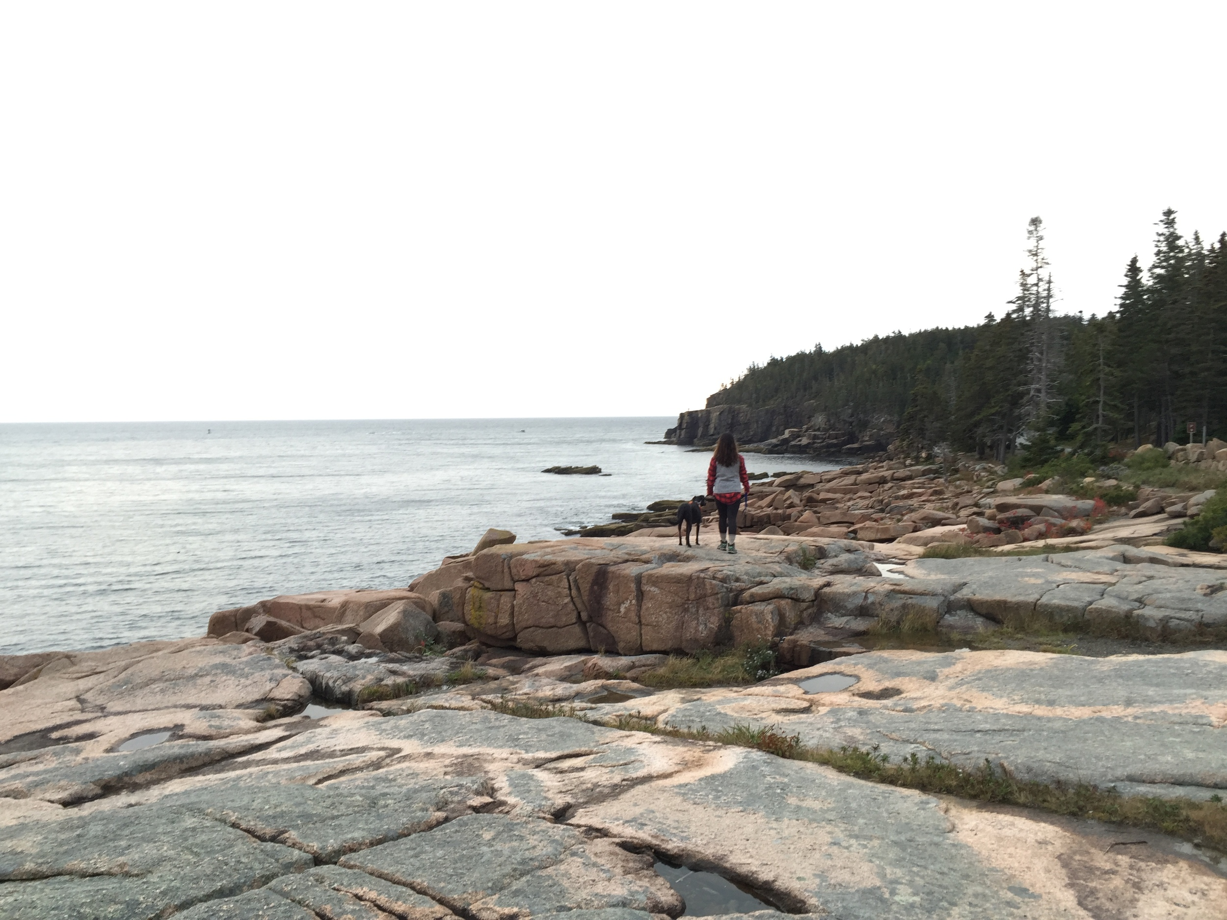 One of the vista points along Ocean Path
