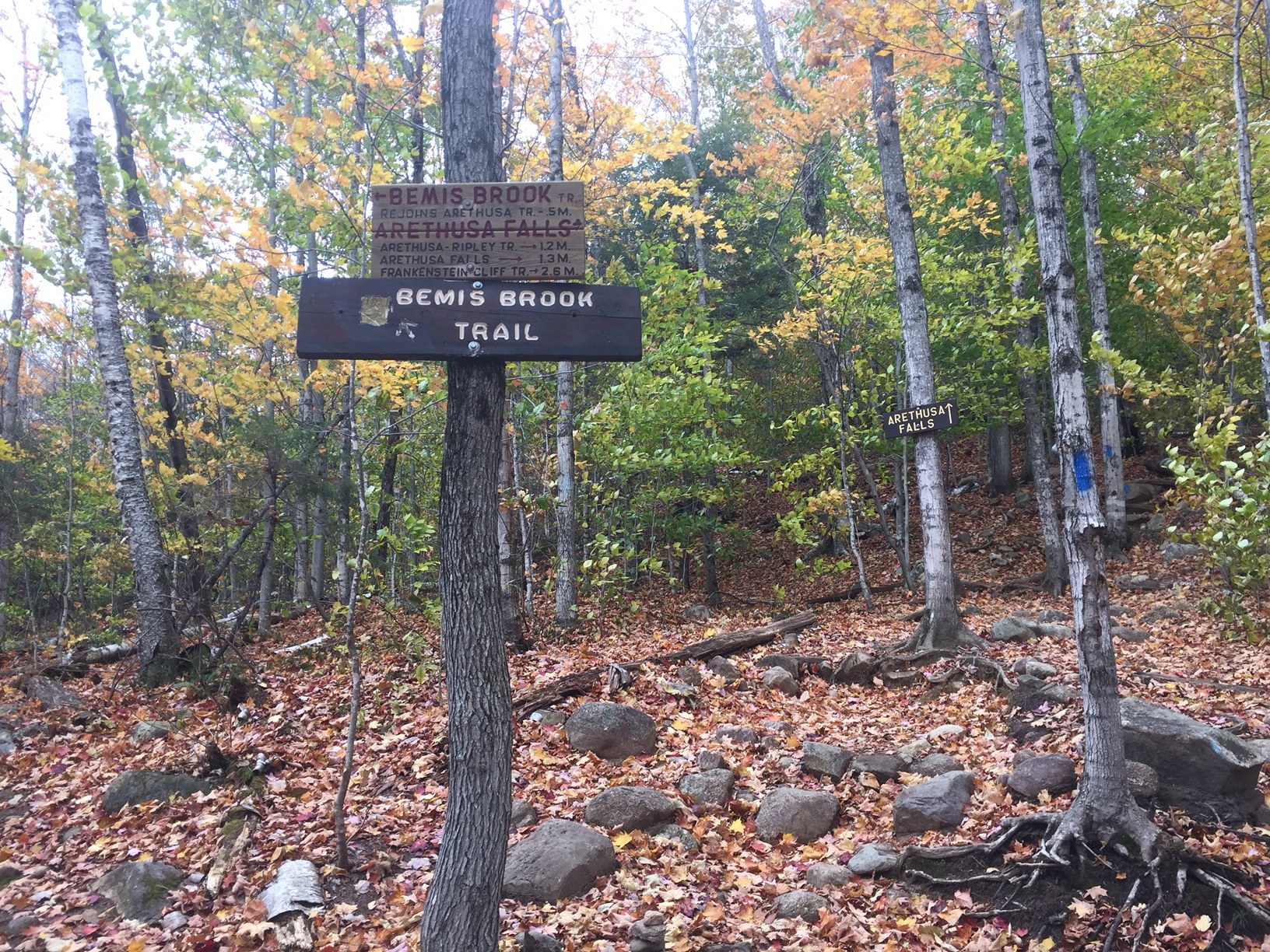 Trailhead to Arethusa Falls