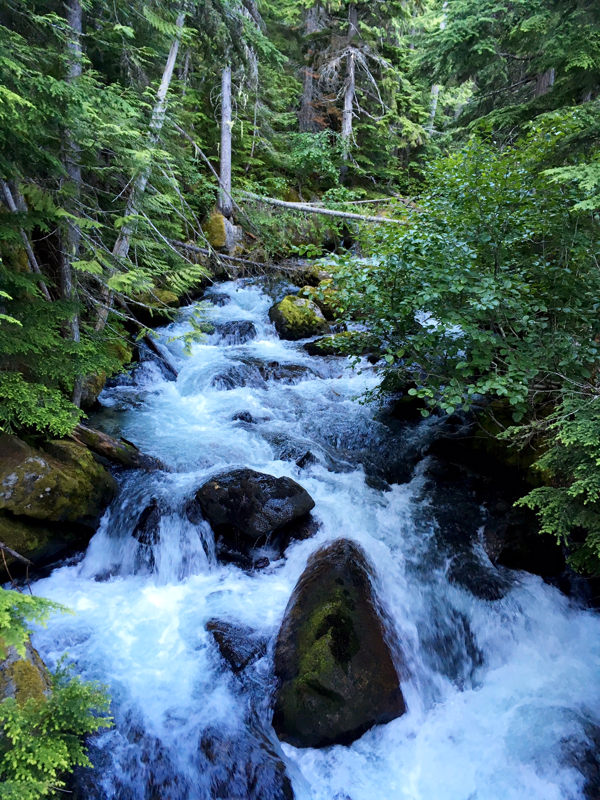 Passing a creek on the way to Horseshoe Lake in the Enchantments, Washington