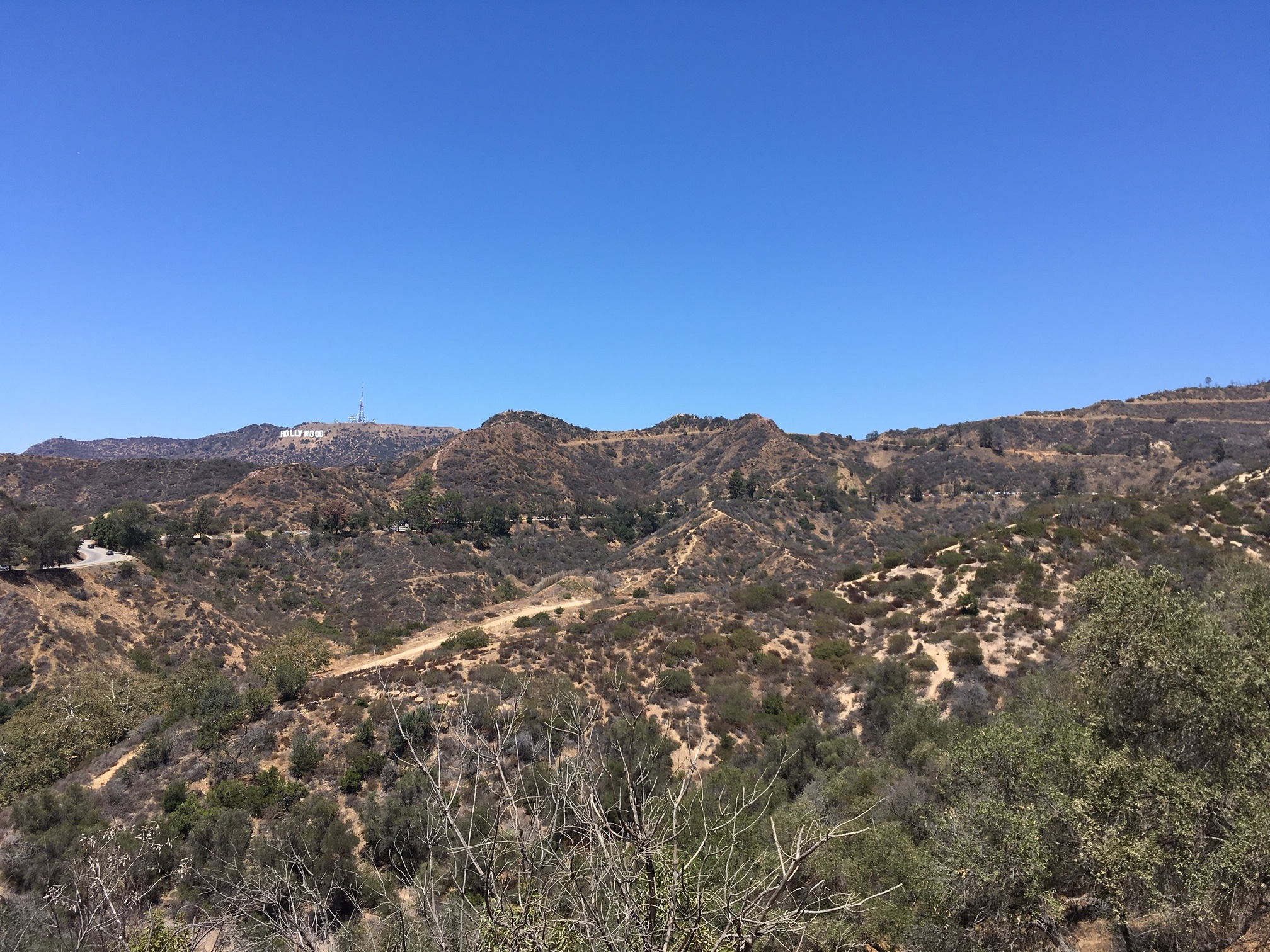 Views of the Hollywood Sign
