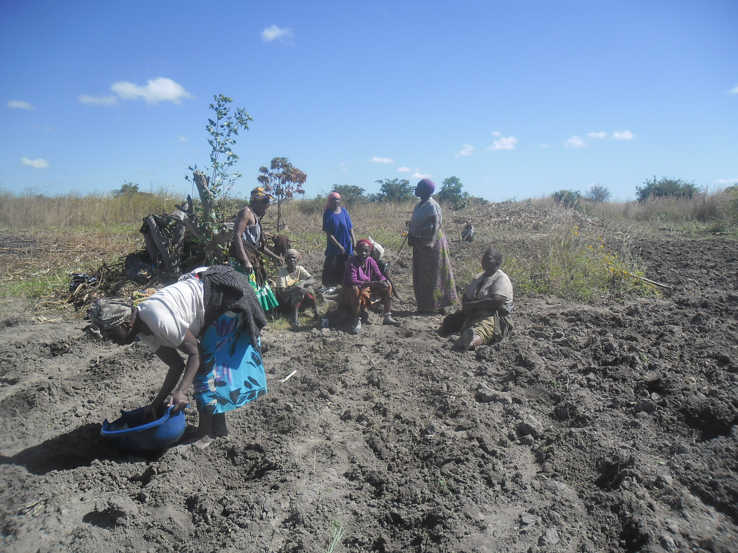 Women Group at Tubombe Preparing field for Vegetable Garden
