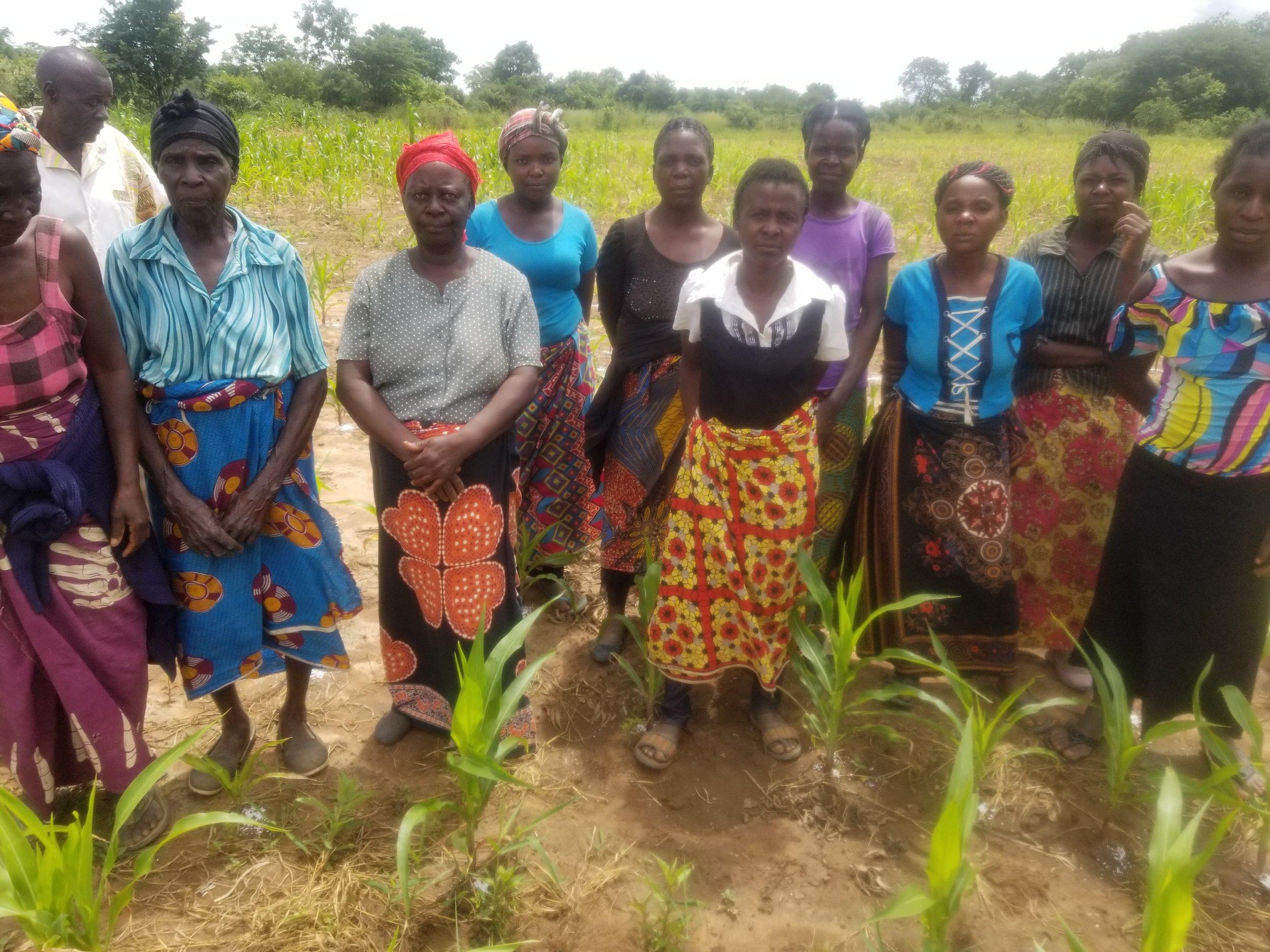 Sunshine Women Farmers Group