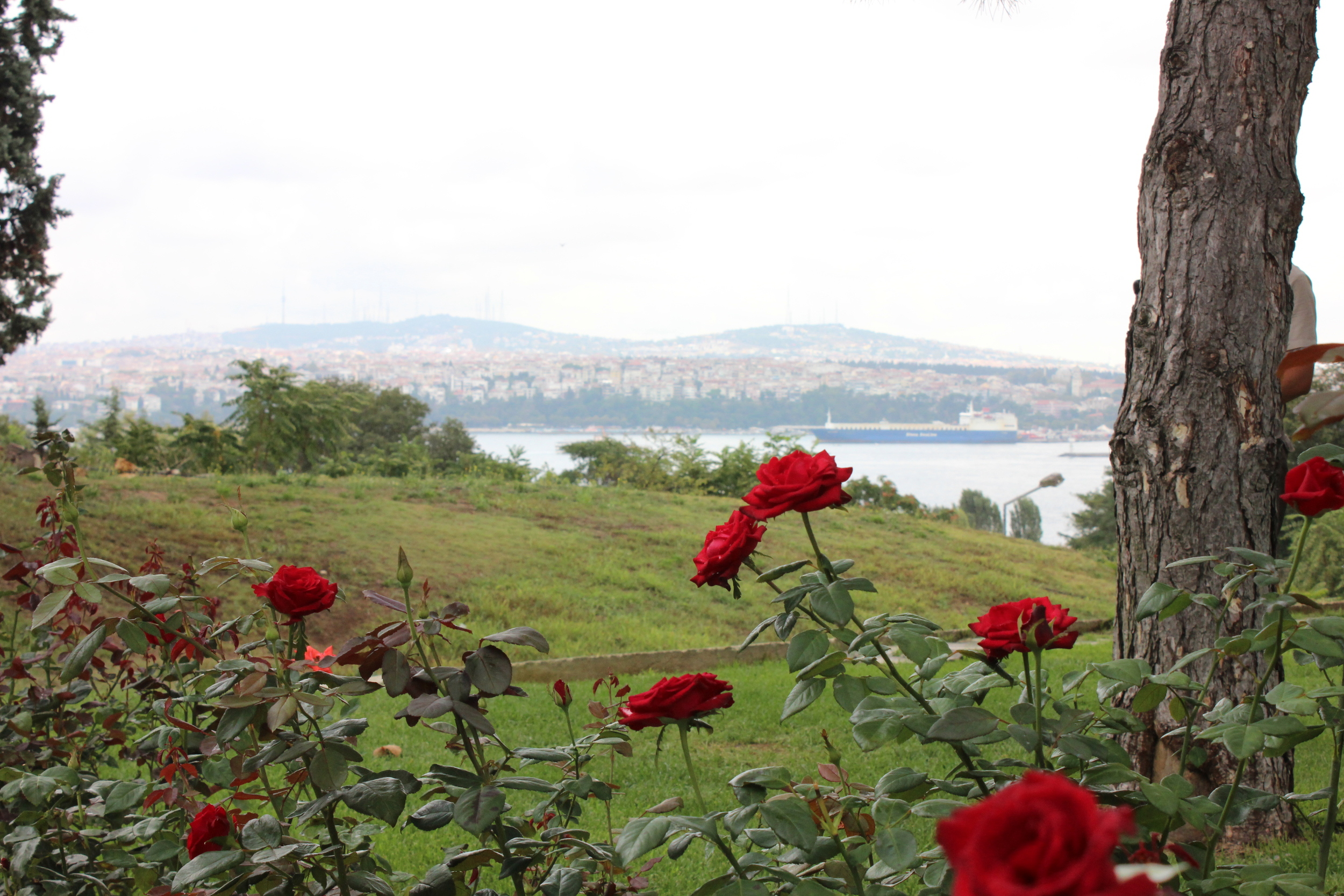 View of Bosphorous from Topkapi Palace