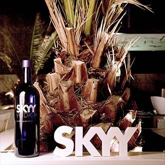 _Skyy_Vodka_Skyylista_15_330x330px.jpg