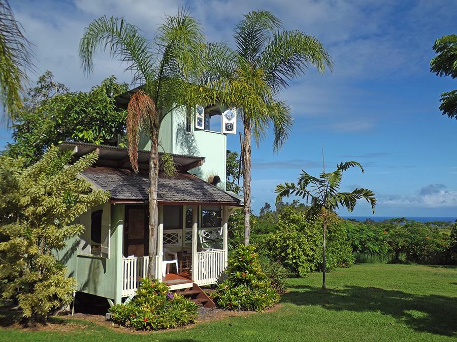 avocado-tree-house-rates.jpg