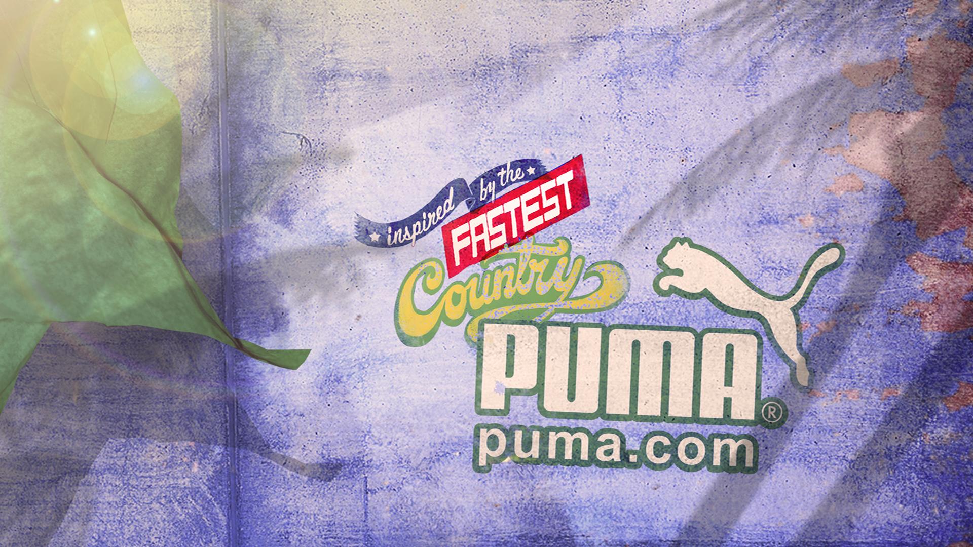 Puma DECK2e.jpg