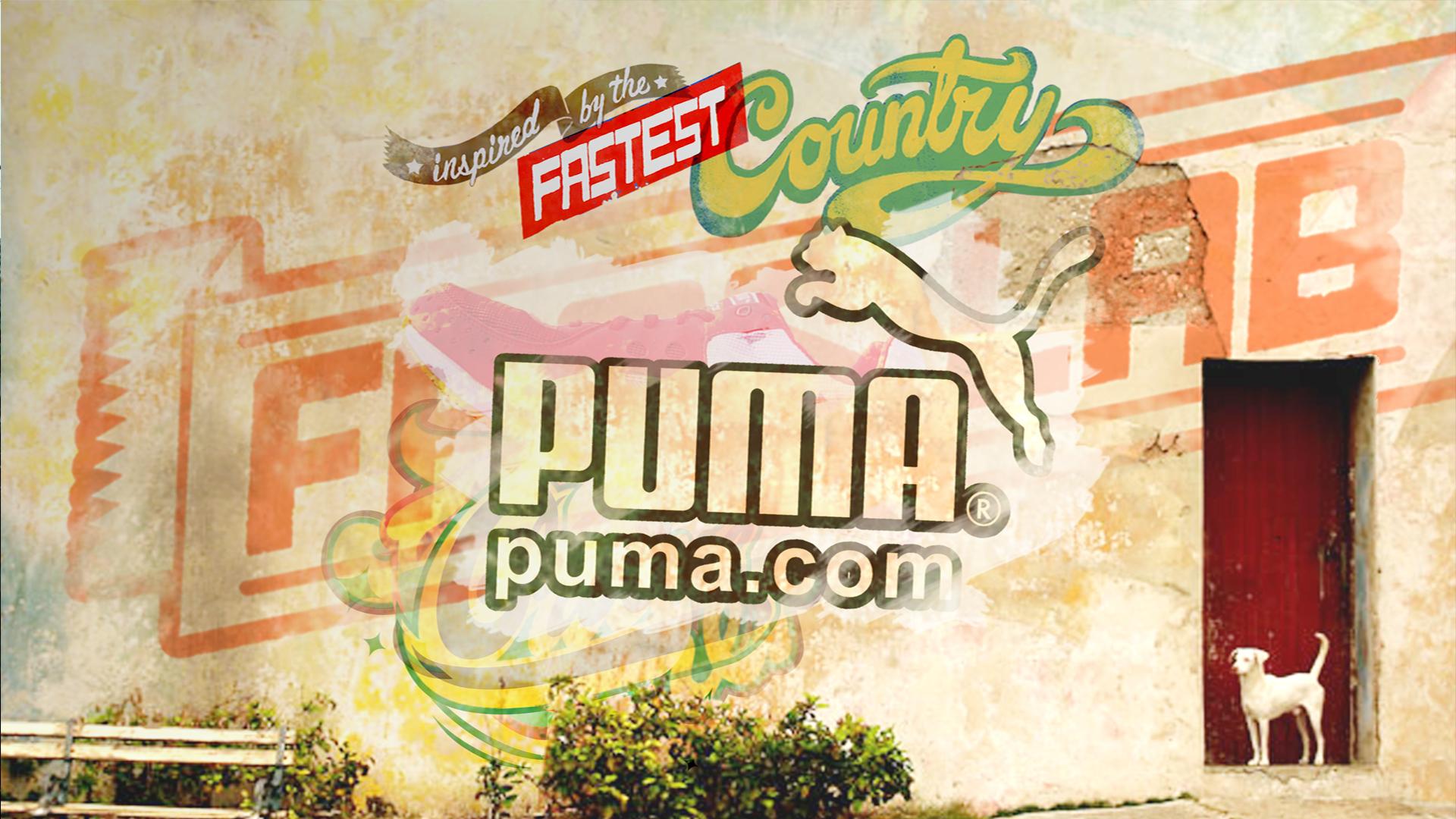 Puma DECK2l.jpg
