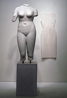 Venus 1989