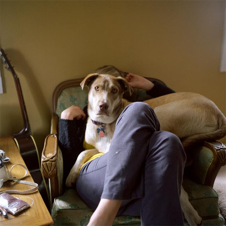 Dog Face Rule   2013
