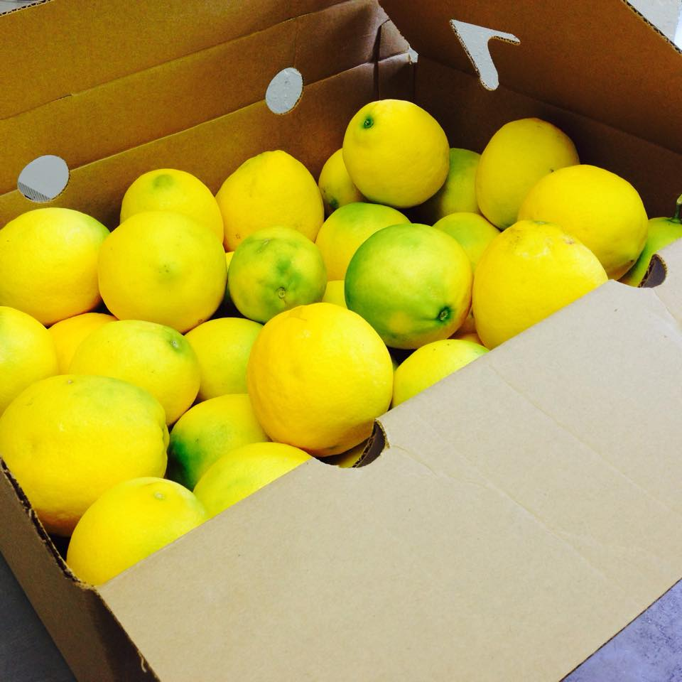 Lemon Box.jpg