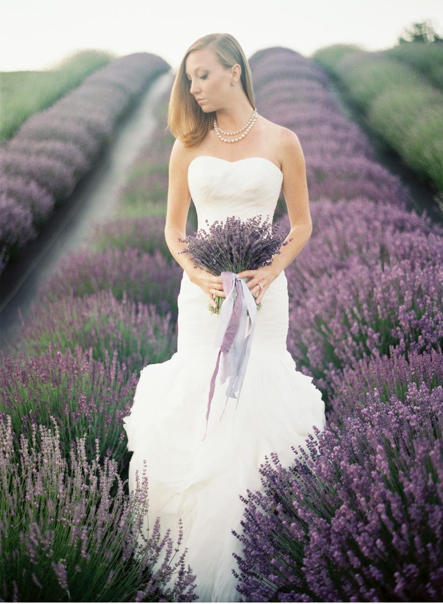 Weber-Photography-Vale-and-Vine_003.jpg