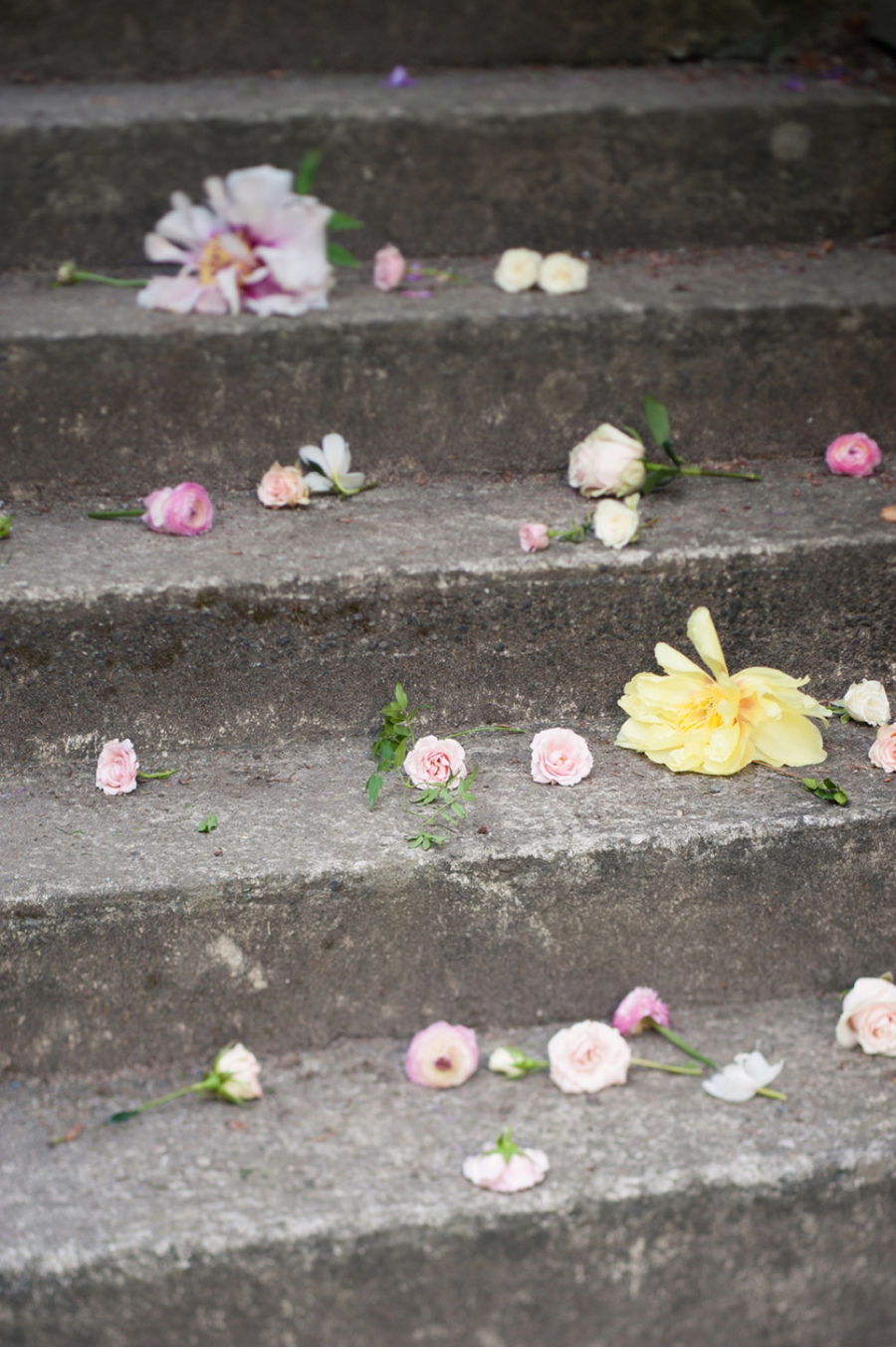 Spring-Flower-Petals-on-Stairs