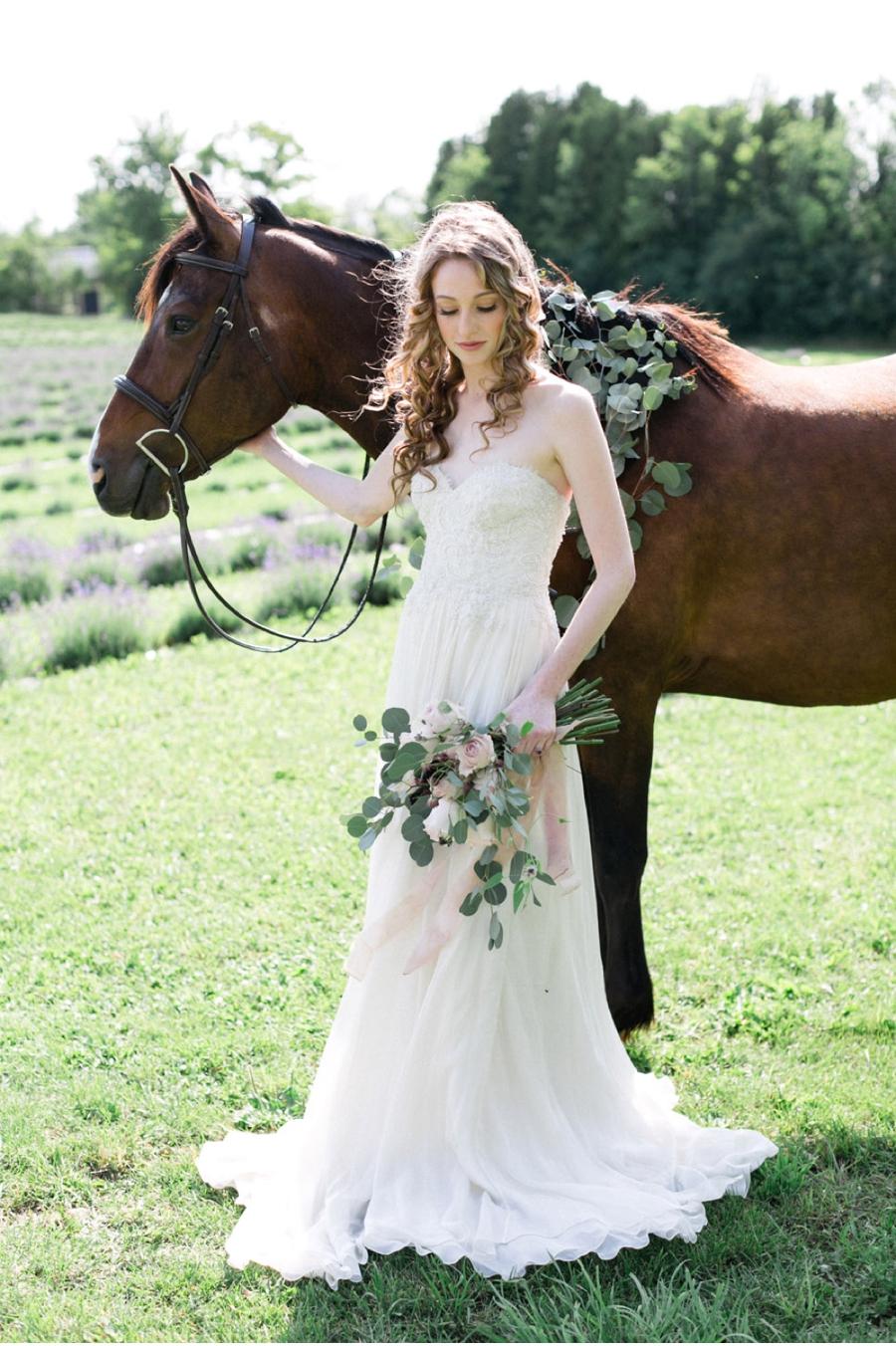 Canadian-Wedding-Photographer-Lavender-Farm