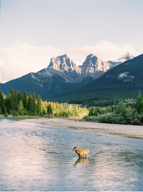 Canmore-Alberta-Wedding-Ideas