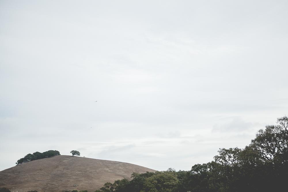 farm-11.jpg