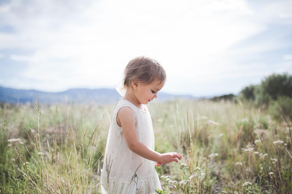 Summer Pocatello Idaho-4.jpg