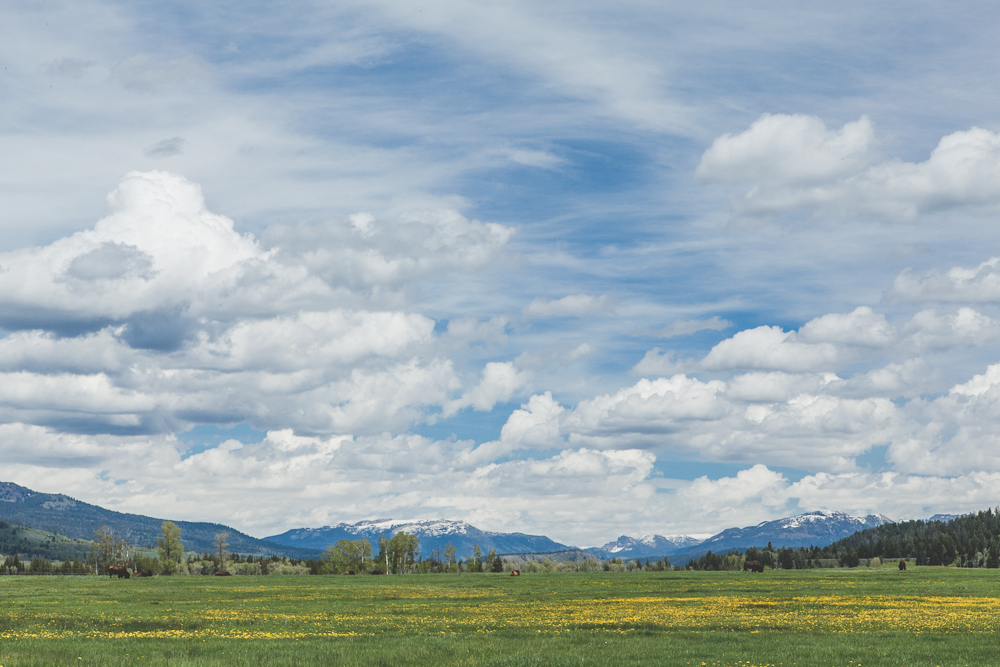 Grand Teton-36.jpg