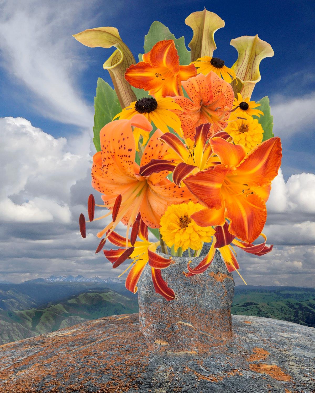 Flowers, Rock Vase & Clouds