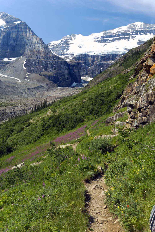 Plain of Six Glaciers Trail, Lk. Louise