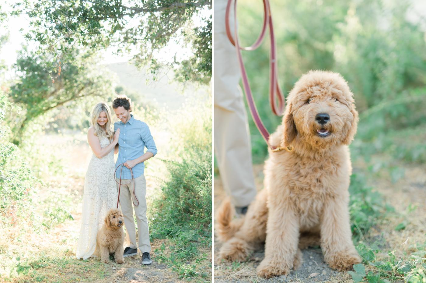 San_Juan_Capistrano_Goldendoodle_family_portrait_session_los_angeles_wedding_photographer-10.jpg