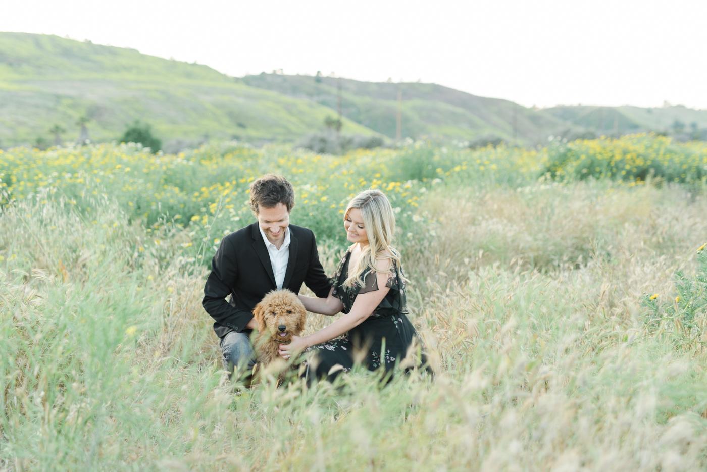 San_Juan_Capistrano_Goldendoodle_family_portrait_session_los_angeles_wedding_photographer-23.jpg