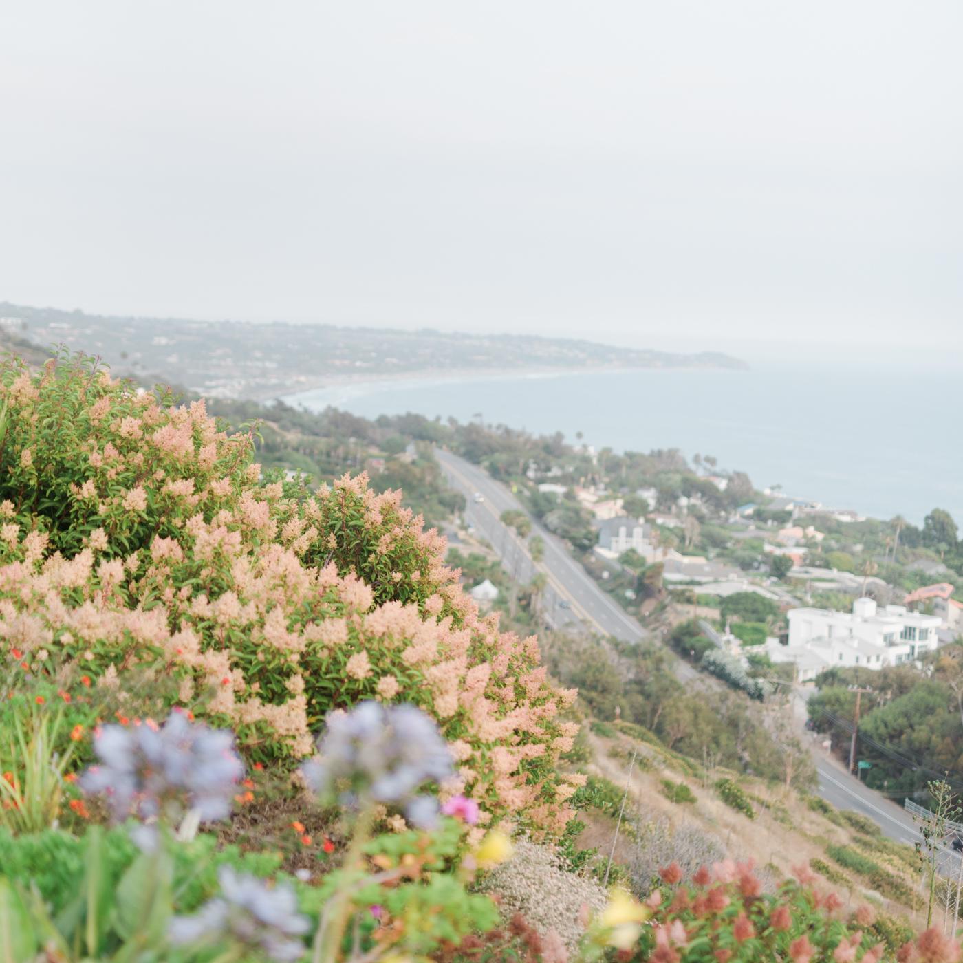AKP_S&F_Malibu_Wedding_Fine_Art_Photography_Los_Angeles-6.jpg