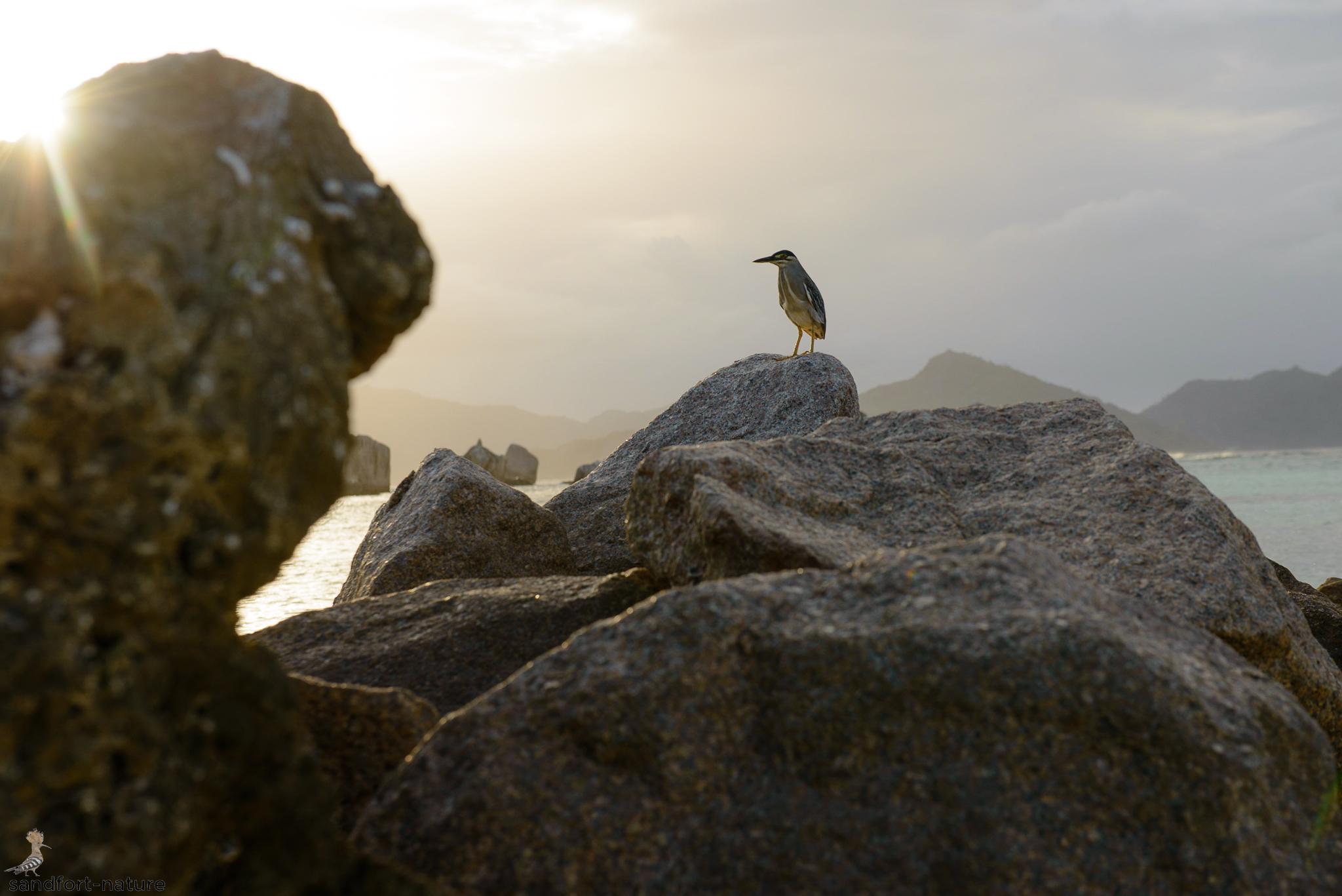Seychelles-5732.jpg