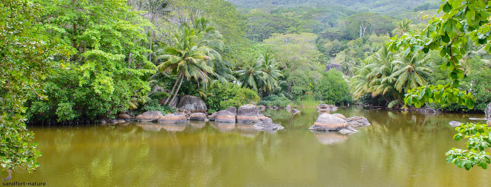 Seychelles-7442-2.jpg