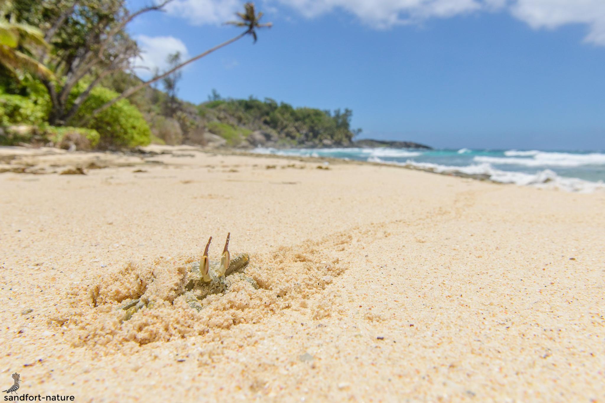 Seychelles-8012.jpg