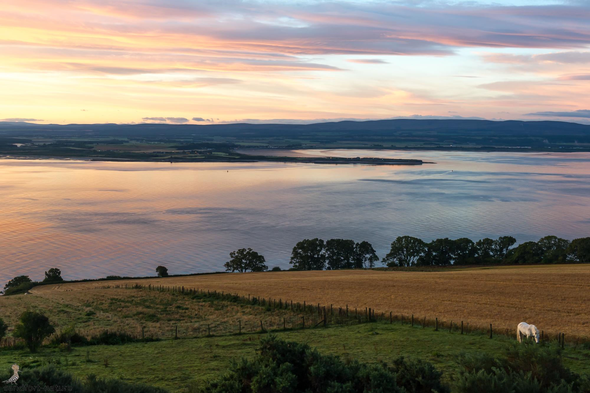 Black Isle | Scotland