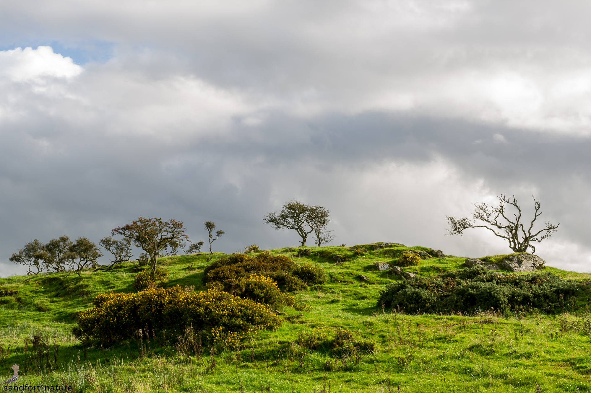 Dumfries | Galloway | Scotland