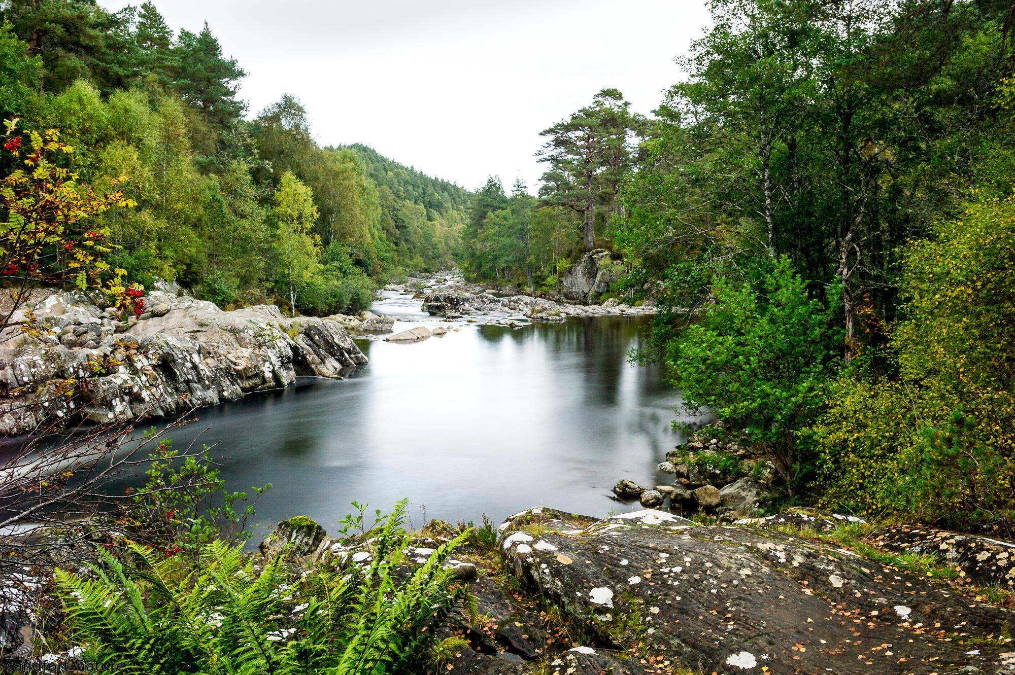 Glenn Affric Dog Falls | Scotland