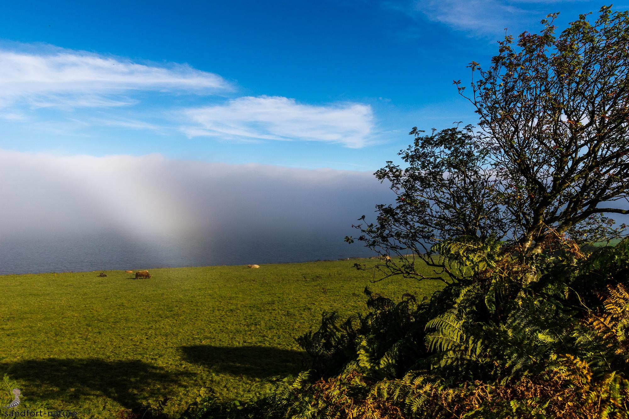 Isle of Arran | Scotland