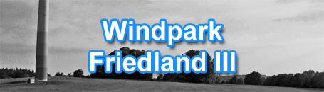 wpfriedland3_455.jpg