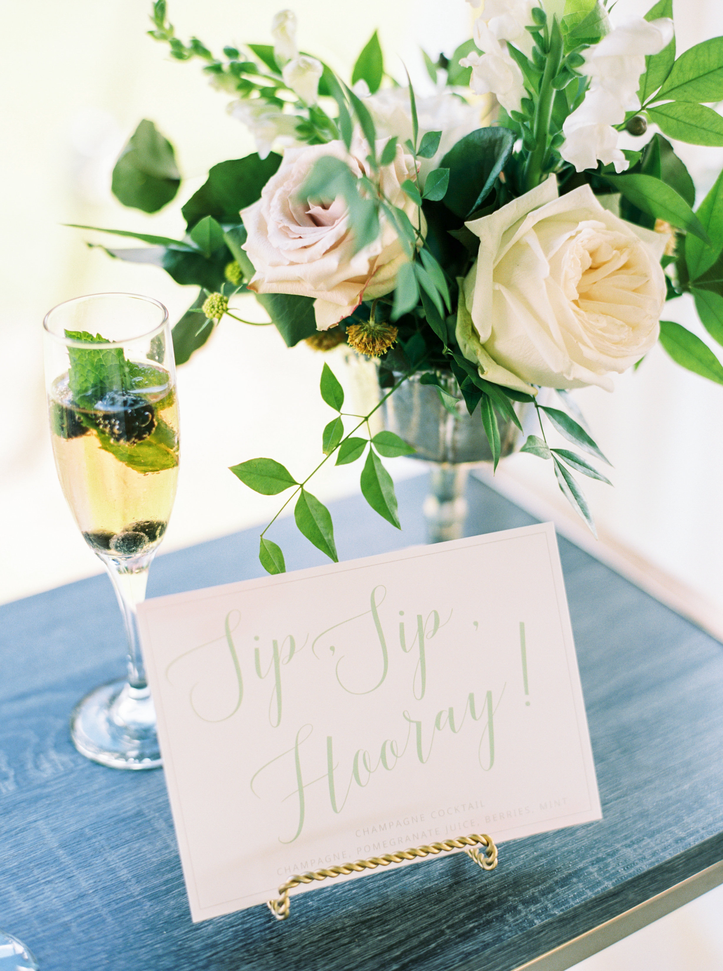 Champagne Manor - Charlotte NC Wedding - Perry Vaile Photography-033.jpg