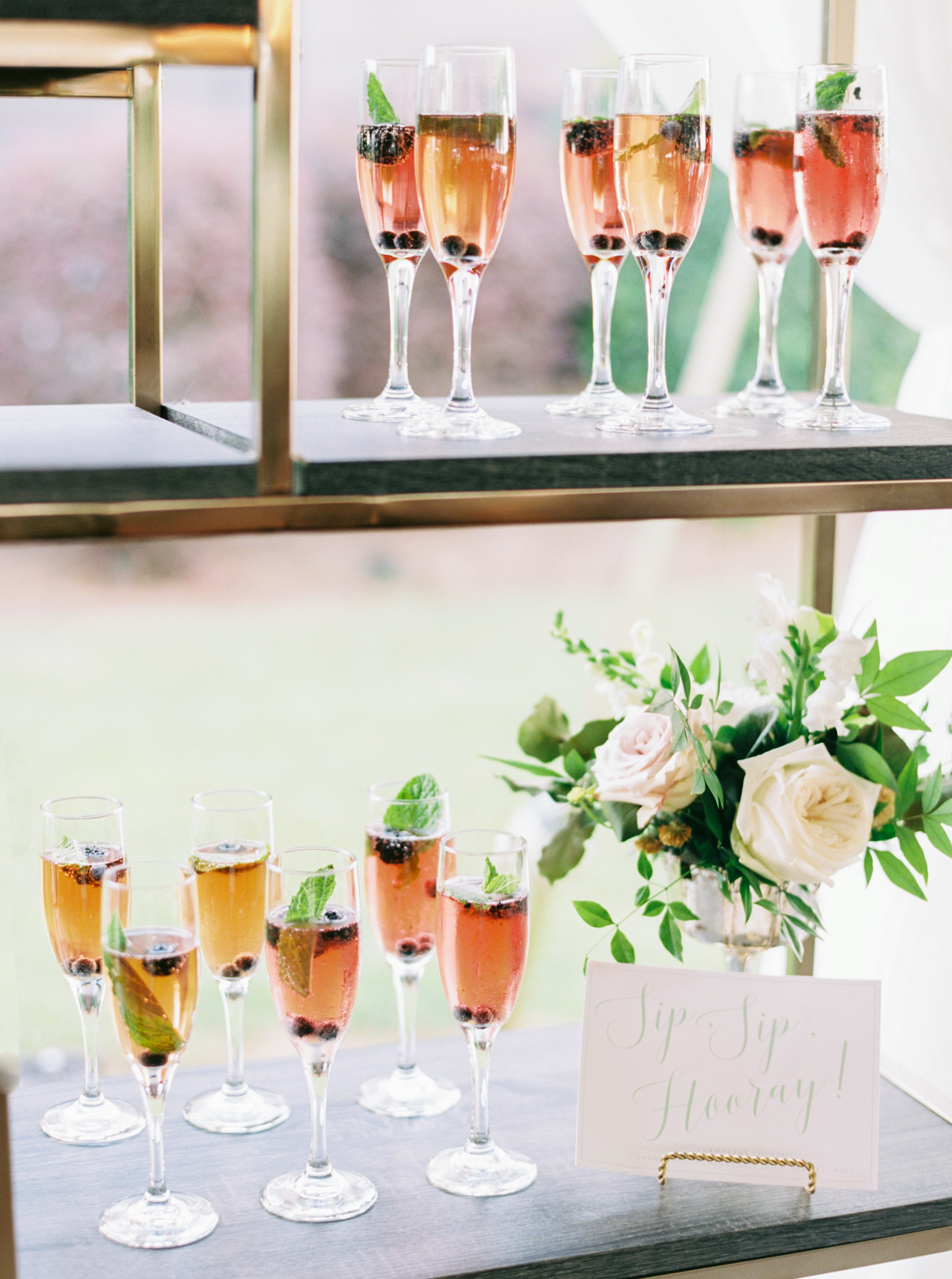Champagne Manor - Charlotte NC Wedding - Perry Vaile Photography-072.jpg