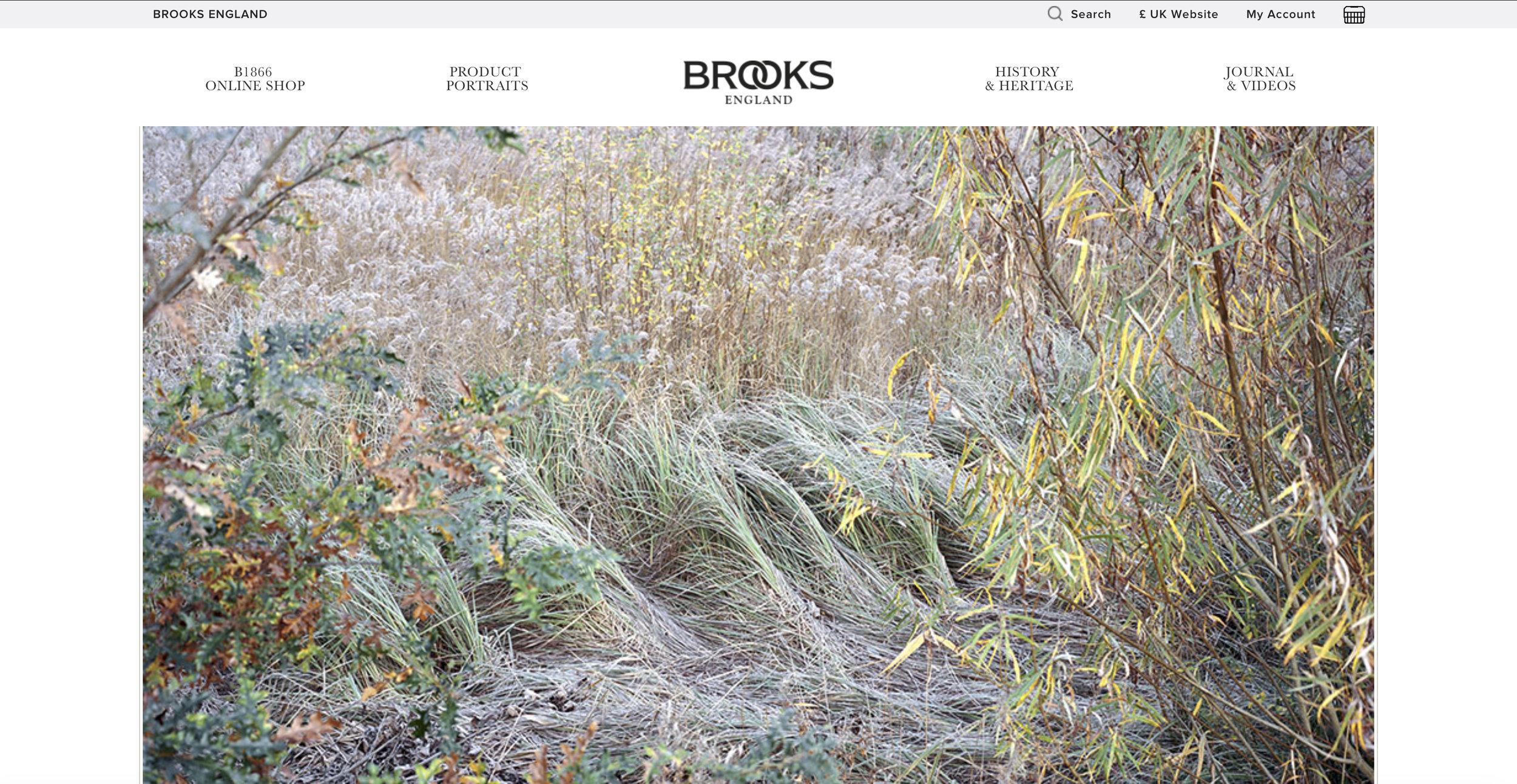 Brooks_England_FN.jpg