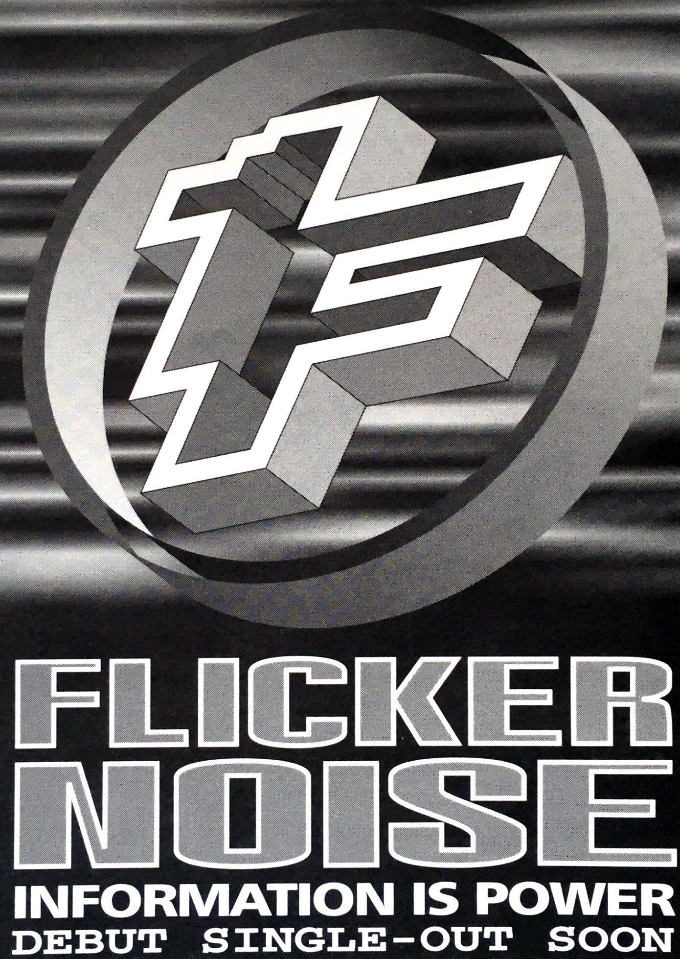 Flicker Noise Information Flyer.jpg